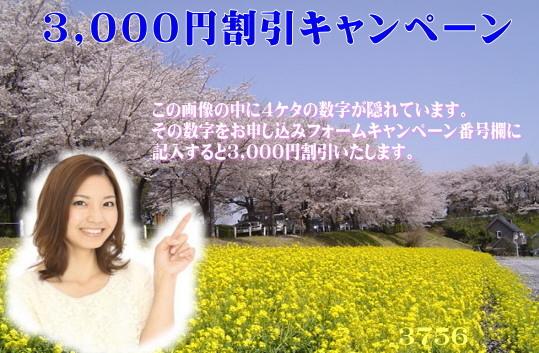 gps-haru.jpg