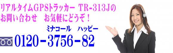 gps-tr313toiawase.jpg